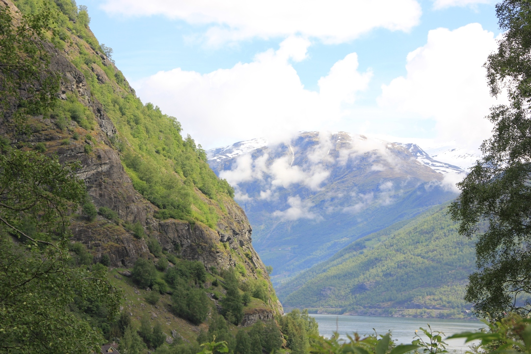 Flam view