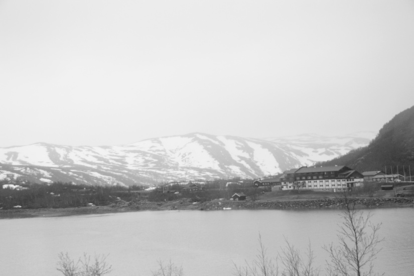 Train Oslo to Bergen
