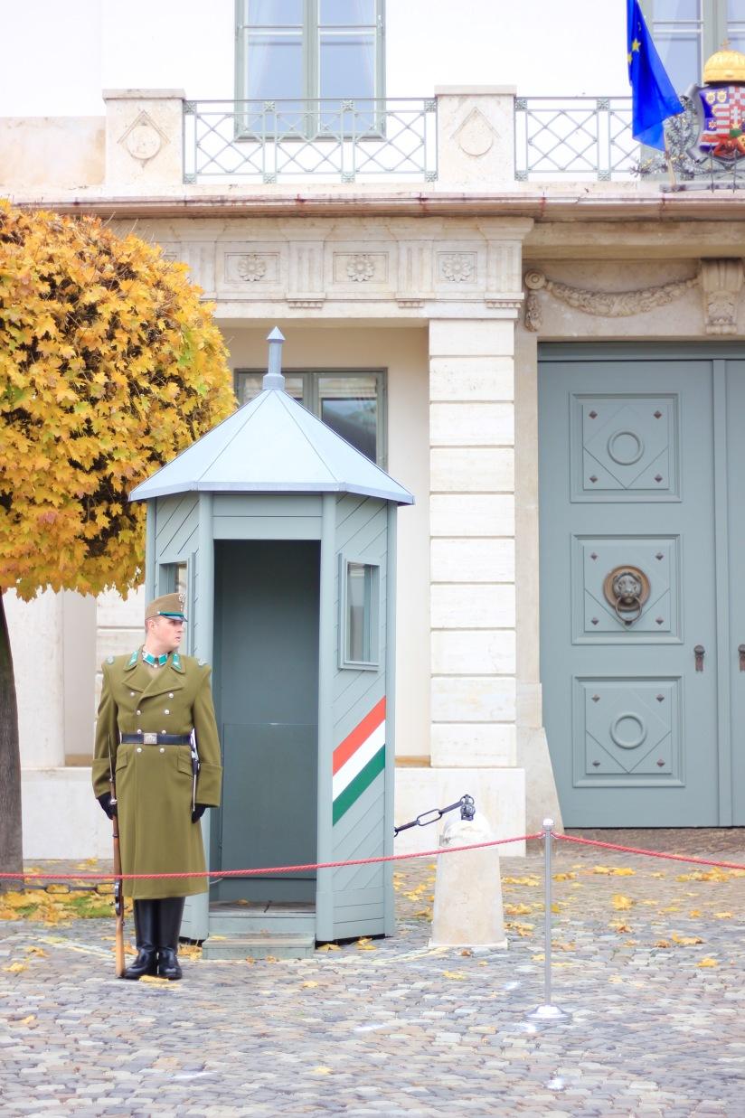 Buda Castle guard
