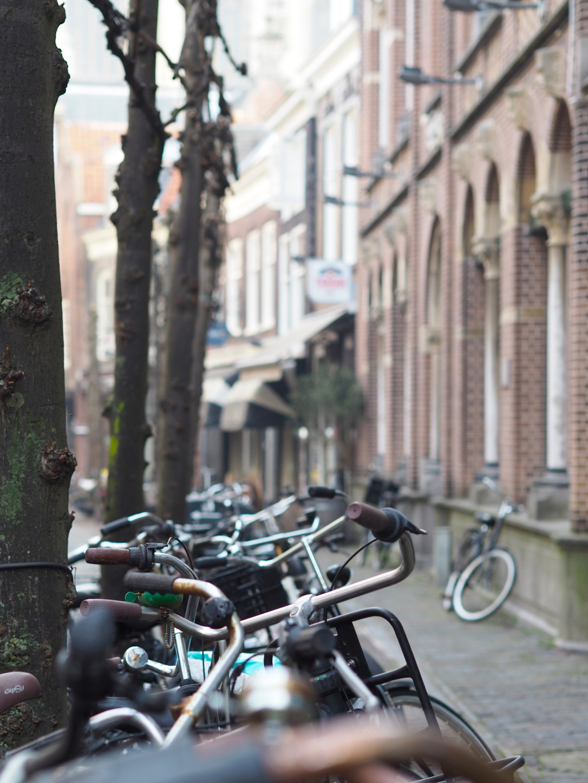 Bikes in Haarlem