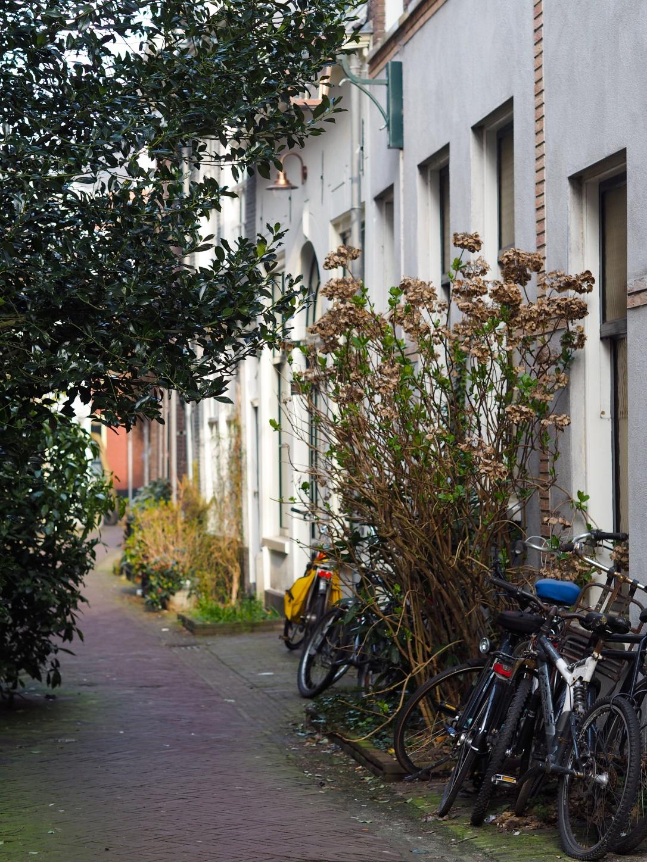 Haarlem sidestreets